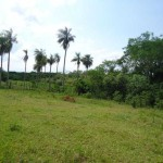 Großes-Grundstück-mit-2-Häusern-zu-verkaufen02