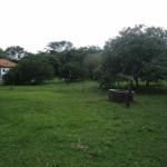 Großes-Grundstück-mit-2-Häusern-zu-verkaufen06