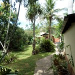 WH-Garten3
